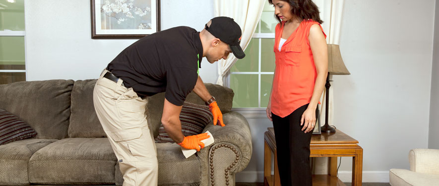 Norristown, PA carpet upholstery cleaning