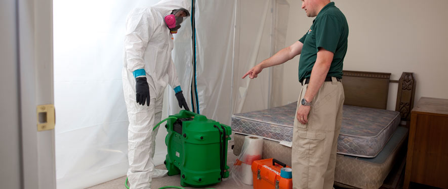 Norristown, PA mold removal process